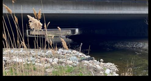 Bridge over creek for wildlife passage