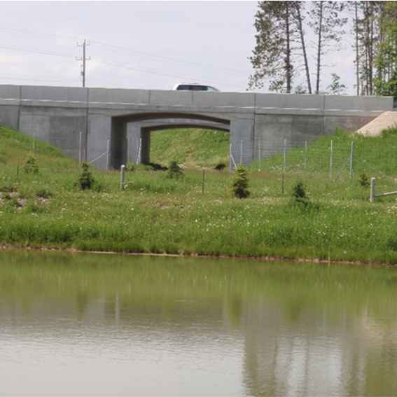Water with bridge overpass in background and a wildlife underpass.